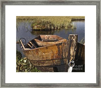 Skiff In Swedish Swamp Framed Print by Heiko Koehrer-Wagner