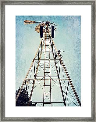 Sky High Framed Print by Pam  Holdsworth