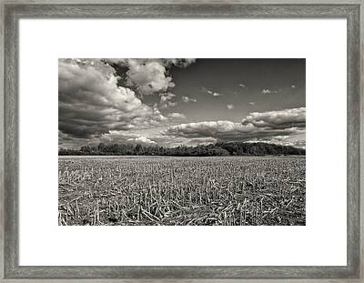 Skyway Framed Print by Rachel Cohen