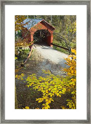 Slaughter House Bridge And Fall Colors Framed Print by James Forte