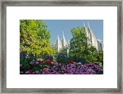 Slc Temple Flowers Framed Print by La Rae  Roberts