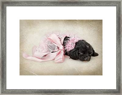 Sleeping Beauty Framed Print by Susan Schmitz