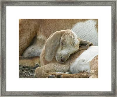 Sleeping Beauty  Framed Print by Yumi Johnson