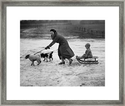 Sleigh Run Framed Print by N Smith