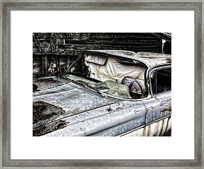 Slimy Sue  Framed Print by JC Photography and Art