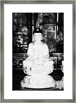 Small Golden Buddha Statue In Monastery Of Ten Thousand Buddhas Sha Tin New Territories Hong Kong Framed Print by Joe Fox