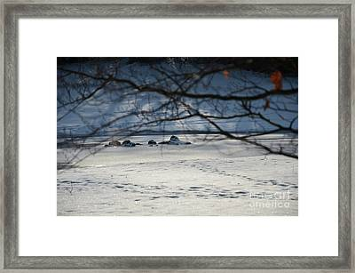 Small Winter Paradise 1 Framed Print by Bruno Santoro