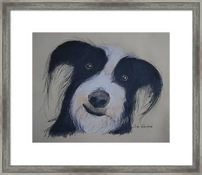 Smiling Dog Framed Print by Jose Valeriano
