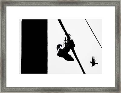 Sneakers Framed Print by Bill Cannon