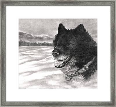 Snow Dog Framed Print by Kathleen Kelly Thompson