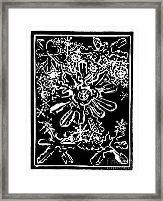 Snow Flakes Framed Print by Dariusz Gudowicz