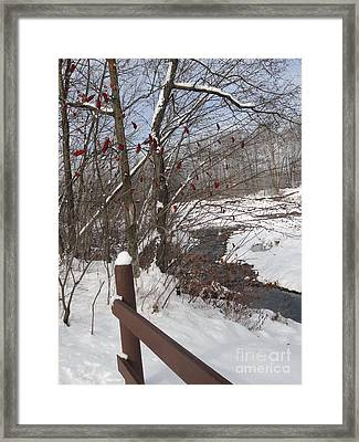 Snow Stream Framed Print by Meandering Photography