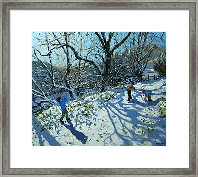 Snowball Fight Framed Print by Andrew Macara