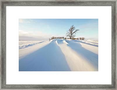 Snowdrift Framed Print by Susan McDougall Photography