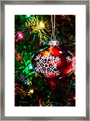 Snowflake Ornament Framed Print by Christopher Holmes