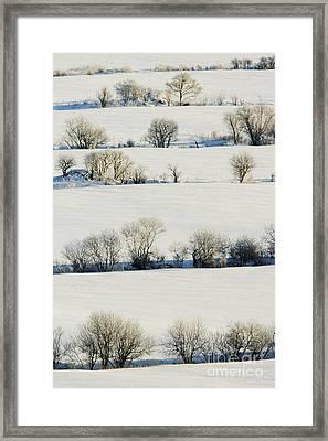 Snowy Landscape Framed Print by Jeremy Woodhouse