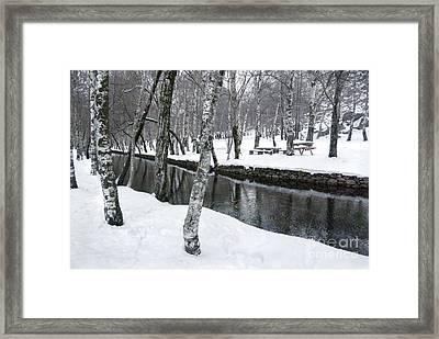 Snowy Park Framed Print by Carlos Caetano
