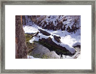 Snowy Stream Framed Print by Virginia Hagerty