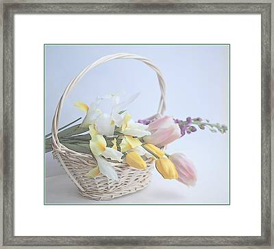 Softness Framed Print by This Wonderful Life