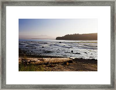 Sointula With The Mountains Framed Print by Taylor S. Kennedy