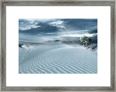 Solace Framed Print by Lourry Legarde