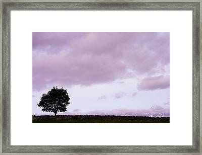 Solitude - Denbigh Moors Framed Print by Georgia Fowler