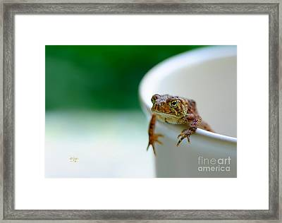 Somebody Needs Coffee Framed Print by Lois Bryan