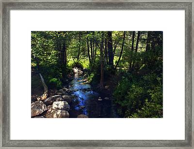 Somehow You Know Framed Print by Laurie Search