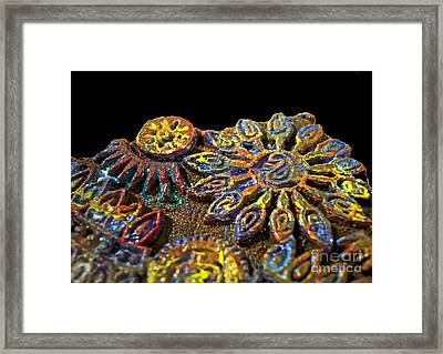 Something Different Framed Print by Gwyn Newcombe