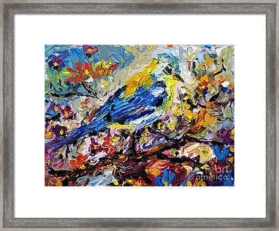 Songbird Blue In A Tree Framed Print by Ginette Callaway