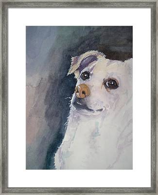 Sorry Framed Print by Victoria Glover