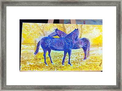 Sotto Il Sole Framed Print by B Russo
