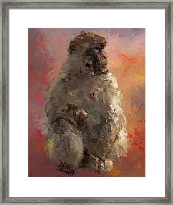 Space Monkey Framed Print by Yury Malkov