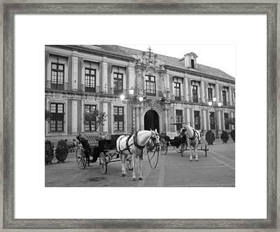 Spain Framed Print by Matt Wilton