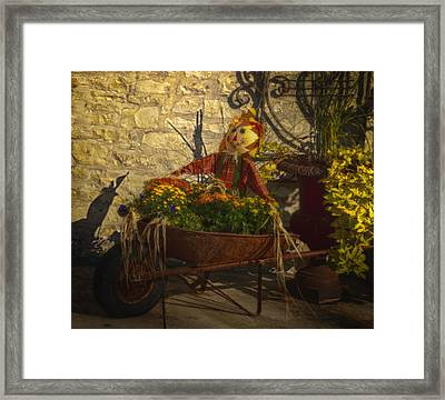 Special Delivery Framed Print by Kelly Rader