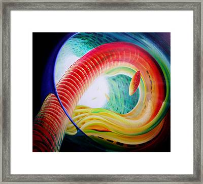 Sphere Serpula 2 Framed Print by Drazen Pavlovic
