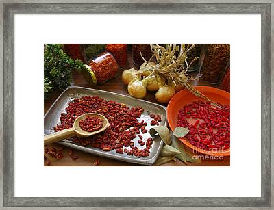 Spicy Still Life Framed Print by Carlos Caetano