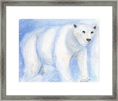 Spirit Bear Framed Print by Janelle Schneider