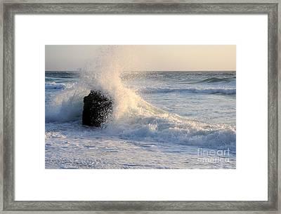 Splash 2 Framed Print by Catherine Lau