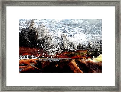 Splash On The Wood Framed Print by Nelly Avraham
