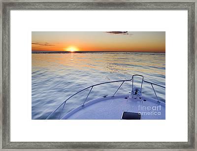 Sportfish Sunrise On The Atlantic Framed Print by Dustin K Ryan