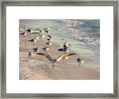 Spread Your Wings Framed Print by Kim Hojnacki