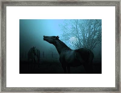 Spring Breeze Framed Print by Joachim G Pinkawa