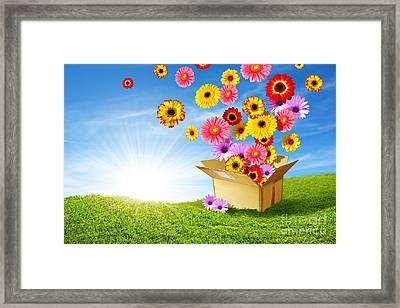 Spring Delivery Framed Print by Carlos Caetano