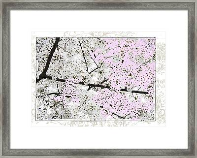 Spring Flowers Licensing Art Framed Print by Anahi DeCanio