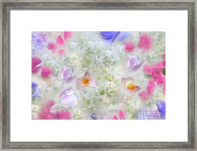 Spring Is In The Air Framed Print by Cindy Lee Longhini