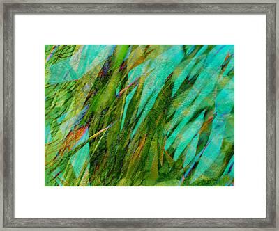 Springtime Joy Framed Print by Ann Powell