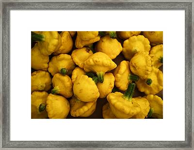 Squash Framed Print by Tanya Harrison