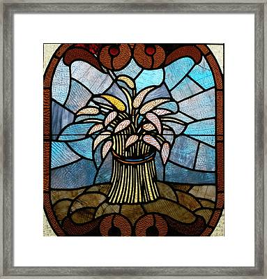 Stained Glass Lc 11 Framed Print by Thomas Woolworth