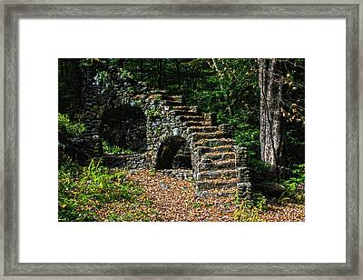 Stairs To Nowhere Framed Print by Tanya Chesnell